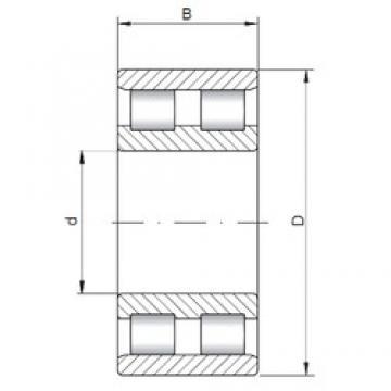 ISO NN3020 cylindrical roller bearings