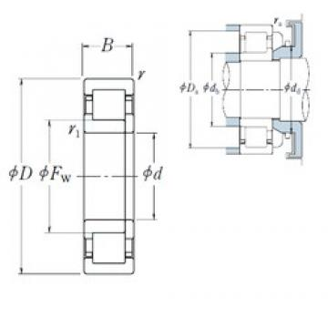 NSK NUP1028 cylindrical roller bearings