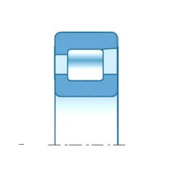 NTN NF305 cylindrical roller bearings #2 image